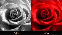 Colour Correction Service