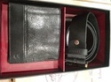 Titan Men's Brown Wallet And Belt Combo