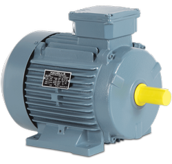 Industrial Havells Induction Motor, Warranty Period: 1 Year
