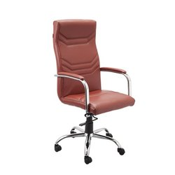 SF-139 Director Chair