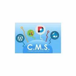 CMS Service