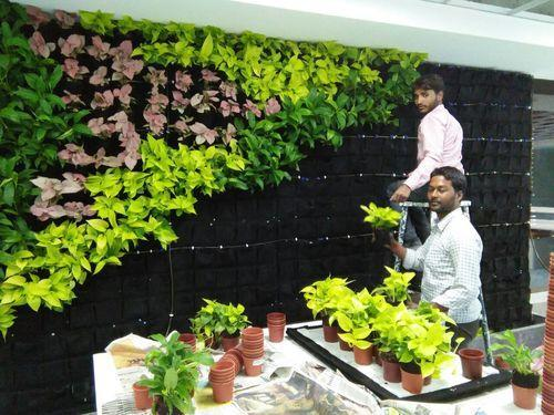 what do grow can vertical gardening know practically garden you flowers about hometalk