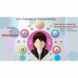 Telesales And Marketing Database Service
