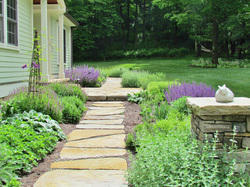Landscaping Consultant Services
