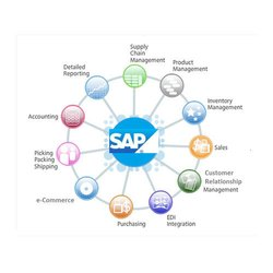 SAP Consultancy Services
