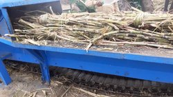 GCI Natural Jaggery Plant Steam Operated, Organic