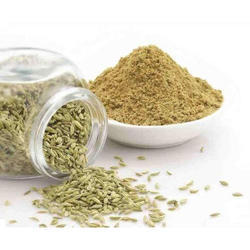 Fennel Saunf Seed Extract