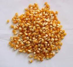 Postman Popcorn (Makka)