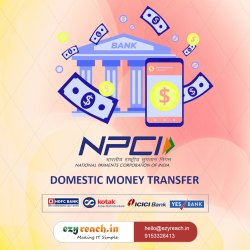 Domestic Money Transfer