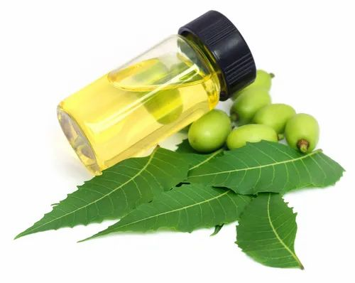 100% Neem Seed ALOETIC NEEM OIL, PLASTIC CONTAINER IN WOODEN BOX, Rs 350  /litre | ID: 20331575662