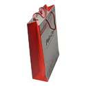 Paper Corporate Shopping Bag