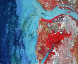 GIS Analysis Services