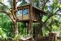 How To Build a Tree House Kolkata