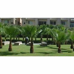 Hotel Garden Development Services