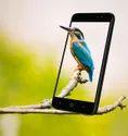Karbonn Aura Sleek Plus Smart Phone