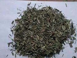 Leamon Grass