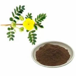 Tribulus Terrestris Dry Extract, Packaging Type: Hdpe Drum, Packaging Size: 25 Kgs