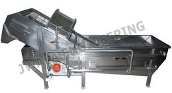 Vegetable Washer (Continuous Type)