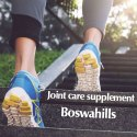 Boswahills Shallaki Tablet 700 Value Pack - Joint Care Capsule