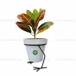 Garden Plant Stand In Bengaluru Karnataka Get Latest