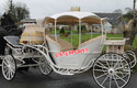 Royal Cinderella Horse Carriage With Hood