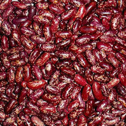 Red Speckled Kidney Bean