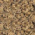 Floor Granite