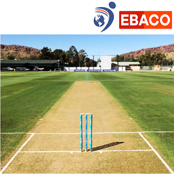 Artificial Cricket Pitch - Cricket Pitch Latest Price, Manufacturers