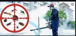 Fumigation Services
