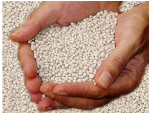 Single Superphosphate Market