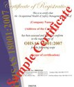 OHSAS 18001-2007 Certification Service