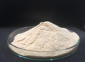 Bio Protein Hydrolyzed Spray Dried Powder (85-90%)