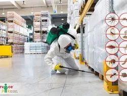 Cockroach Commercial Pest Control Services
