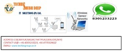 WIRELESS SENSOR PROJECT SERVICE IN INDIA