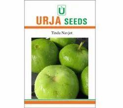Natural Tinda Navjot Seeds