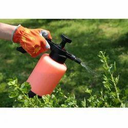 Organic Pest Control Service