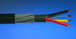 6.0 Sq MM X 2 Core Paliwal Cab Copper Armoured Cable
