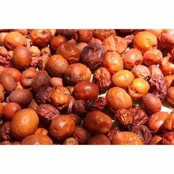 Ziziphus Mauritiana Seed