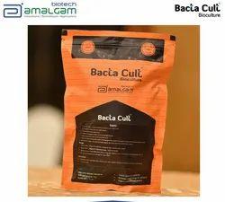 Bacta Cult (Septic Activator)