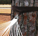Tree Straps