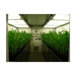 Walk-in Plant Growth Chamber