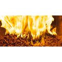 Burning Biomass Pellet
