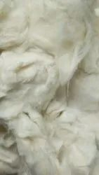 Natural Cotton Fiber