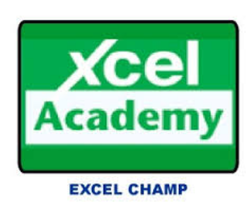 Excel Champ Course