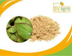 Icariin 98% 50% 15% Epimedium Extract
