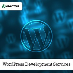 5 Free Months 1 Month WordPress Development Services