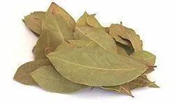 Tej Patra - Bay Leaf - Tamal Patra - Tej Patta - Cinnamomum Tamala