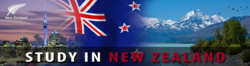 Consultancy Service Study In New Zealand