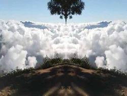 Meesapulimala Kerala Highland Trek Tour