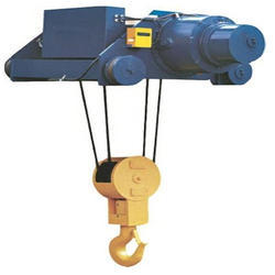 Electric Wire Hoist Crane